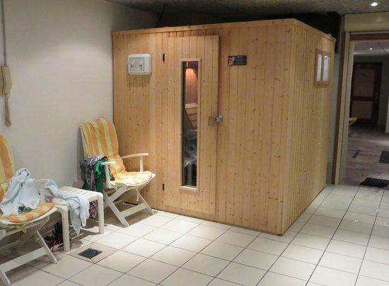Chalet Hôtel Alté Névé : Sauna