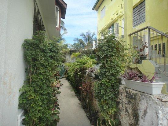 Hotel Maya: Outside.