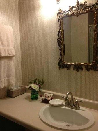 Astor House: Bathroom ~ Love the flowers and the mirror is beautiful.
