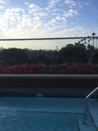 Four Seasons Hotel Los Angeles at Beverly Hills: View of downtown from Jacuzzi