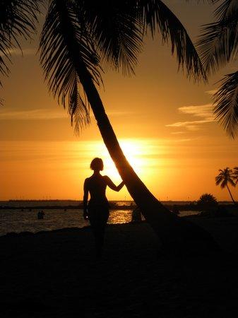 Sheraton Suites Key West: tramonto