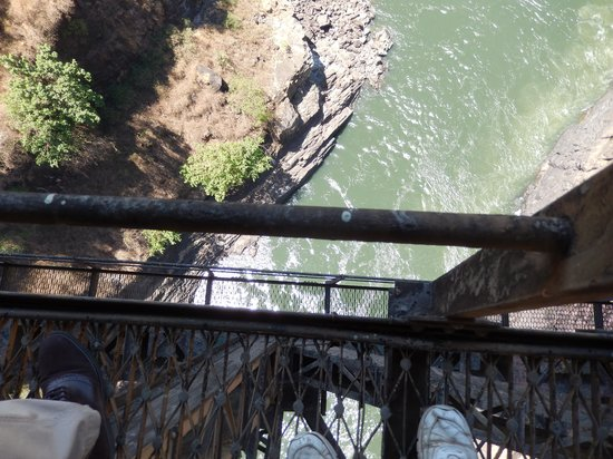 Victoria Falls Bridge Company : What a dive that would be!