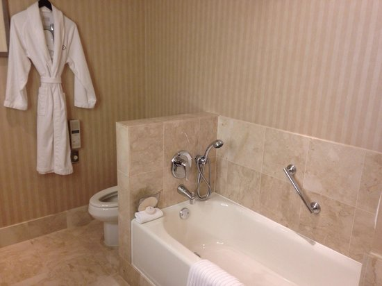 Sofitel Chicago Magnificent Mile: Bath also includes shower to left and hair dryer