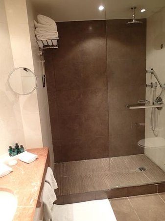 Sofitel Paris La Defense: walk in shower