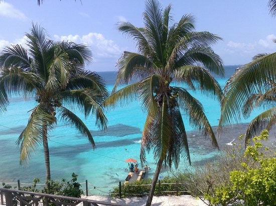 Garrafon Natural Reef Park: :)