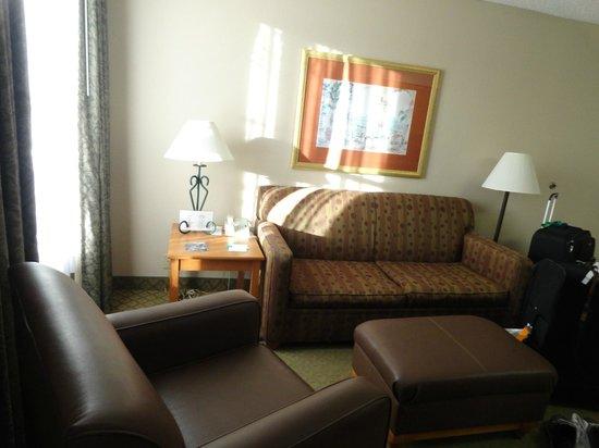 Homewood Suites Orlando-International Drive/Convention Center : sala da suite
