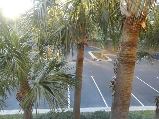 Homewood Suites Orlando-International Drive/Convention Center: vista do estacionamento