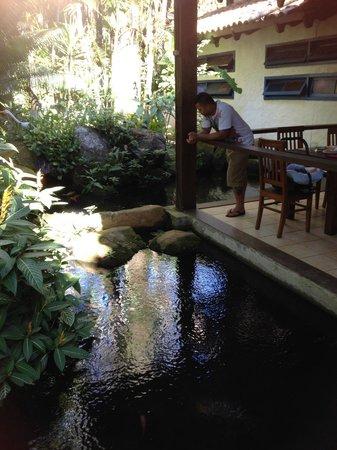 Hotel Aldeia de Sahy: Lago com peixinhos em volta do restaurante, lindo!