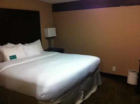 Homewood Suites by Hilton Indianapolis-Downtown : King suite bedroom- notice original warehouse beam across the top of the wall