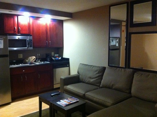Homewood Suites by Hilton Indianapolis-Downtown : Living room area