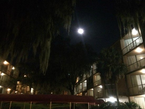 Wyndham Garden Gainesville: A view at nite