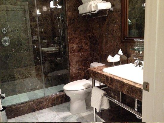 Garden Court Hotel: Incredible Rain Shower