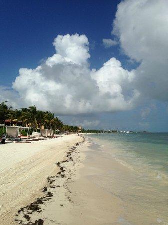 Zoetry Paraiso de la Bonita: Beach shot.