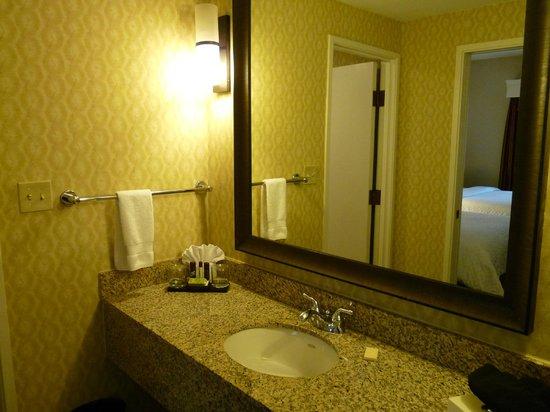 Embassy Suites by Hilton Flagstaff: Bathroom - separate sink area