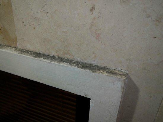 Puri Santrian: Mold in bathroom