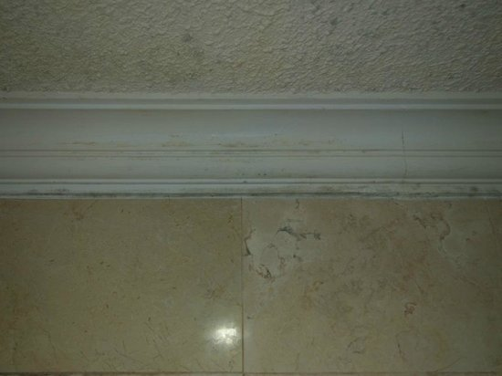 Puri Santrian: Mold in bathroom