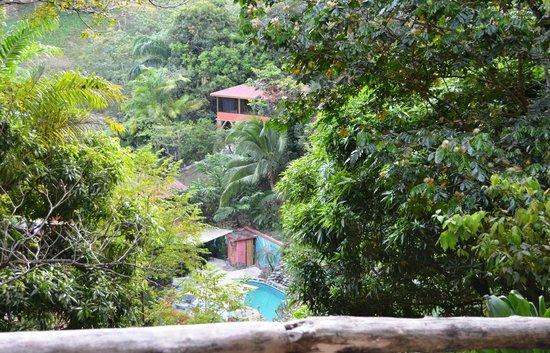 Condotel Las Cascadas: View from Villa Suite Feb. 6, 2014