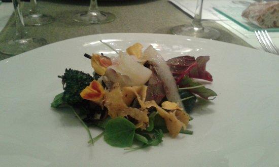 Kiaora Biococina : Salad Starter