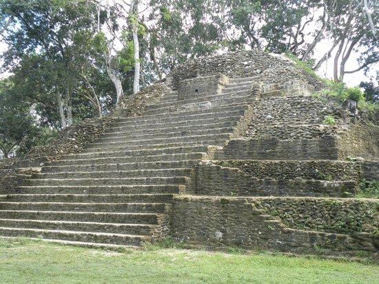Ruines et musée de Cahal Pech : mayan ruins