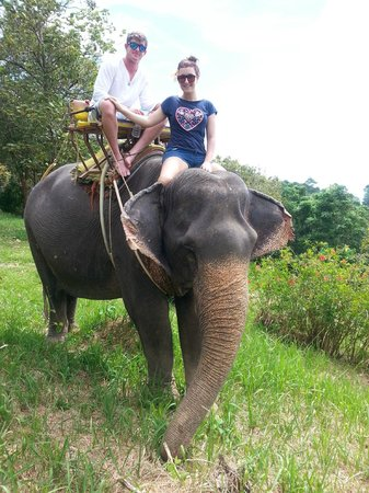 Kok Chang Safari Elephant Trekking: amazing day
