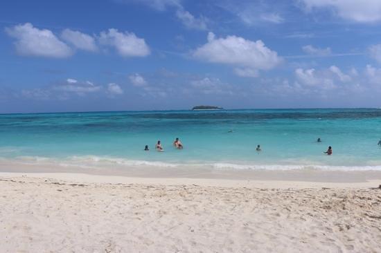 Decameron Isleno: playa frente al hotel