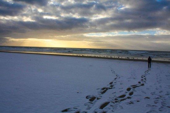 SeaQuest Inn Bed & Breakfast : Snowy sunset
