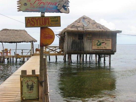 La Sirena de Camp Bay : LA PLACE