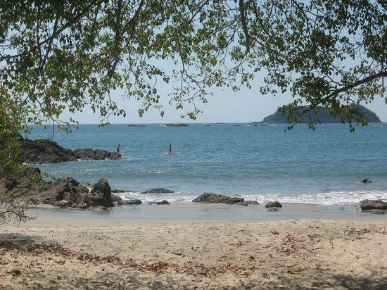 Playa Manuel Antonio : Beach