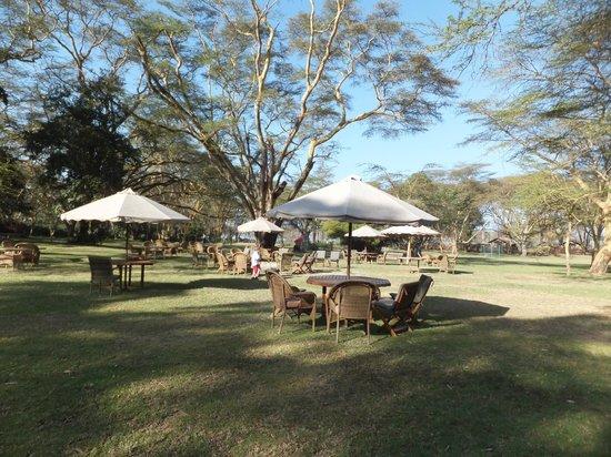 Lake Naivasha Country Club-Sun Africa Hotels: Grounds