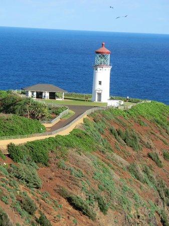 Kilauea Point National Wildlife Refuge: lighthouse from the entrance