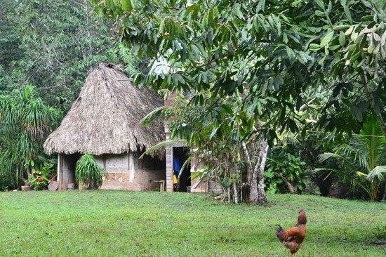 Martz Farm Treehouses and Cabanas Ltd.: Farmhouse