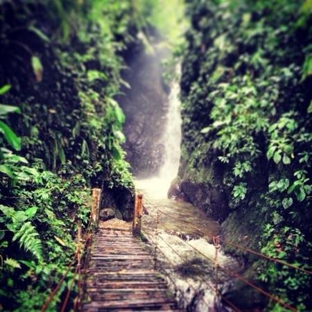 Nambilla Cascadas: cascada