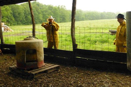 Polyface Farms: Farmhand