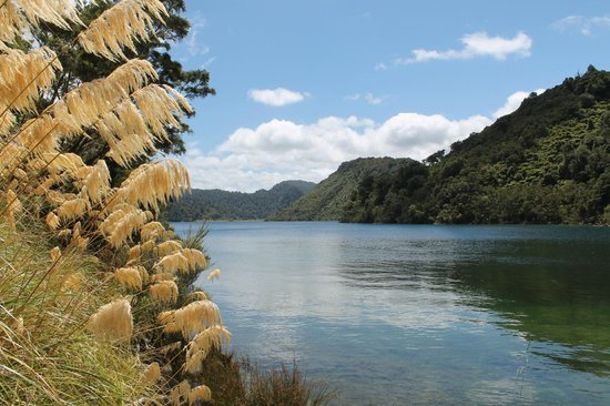 Lake Waikaremoana : By the lake
