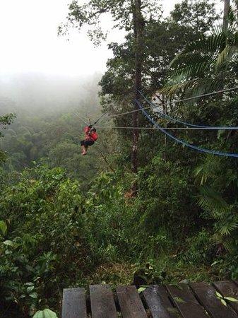 Mindo Canopy Adventure: ziplining
