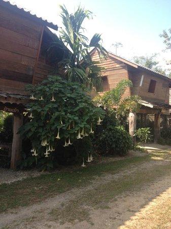Khum Tai Lue Resort: Standard Villa