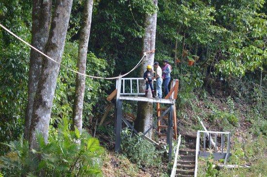 Casa Grande Bambito Highlands Resort : Canopy