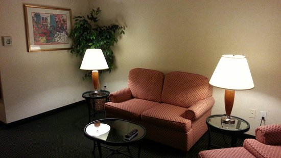 Hilton Garden Inn San Mateo : Couch in Room 522