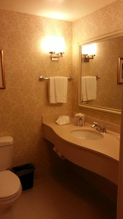 Hilton Garden Inn San Mateo: Std Bathroom