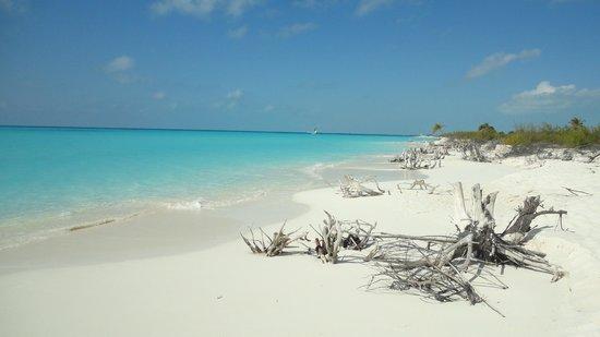 Playa Paraiso : Cayo Largo del Sur, Cuba
