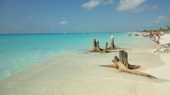 Playa Paraiso : cayo largo, Cuba