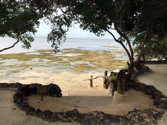 Bluewater Panglao Beach Resort: Beachfront