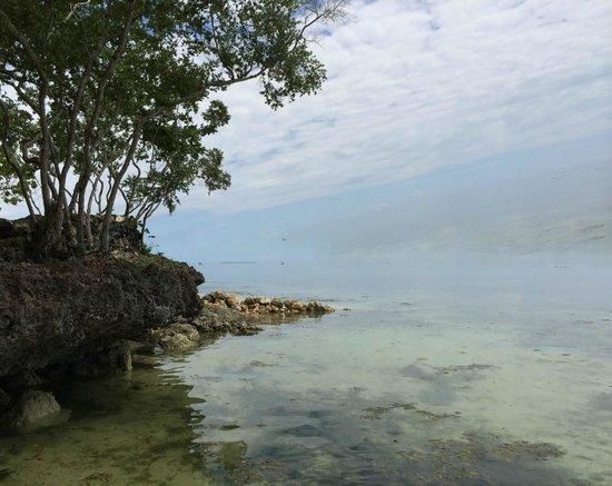 Bluewater Panglao Beach Resort: Sea View