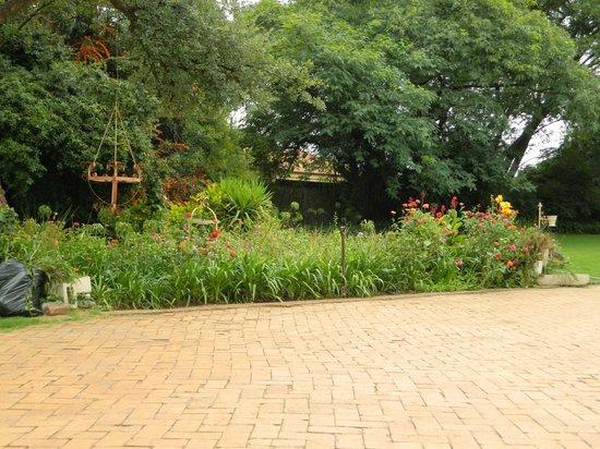 Malandela Guest Manor : The front garden