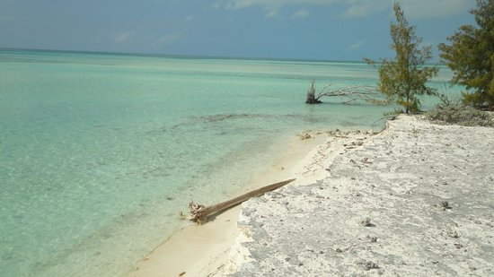 Playa Paraiso: Cayo Iguanas, Cuba