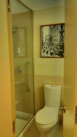 Sheraton Tribeca New York Hotel: Tiny bathroom but a nice size shower