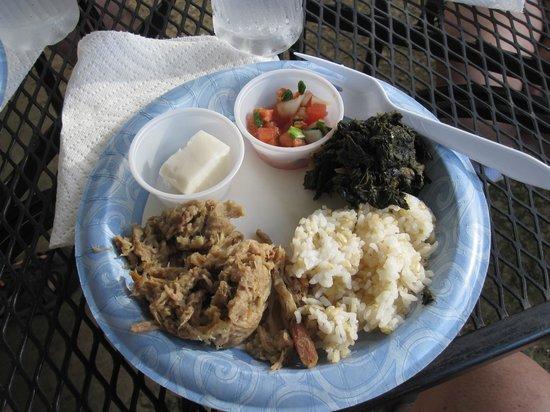 Hawaii Food Tours: Lomi salmon, pork laulau, rice, Kalua pig, and haupia. Along with a small cup of poi.