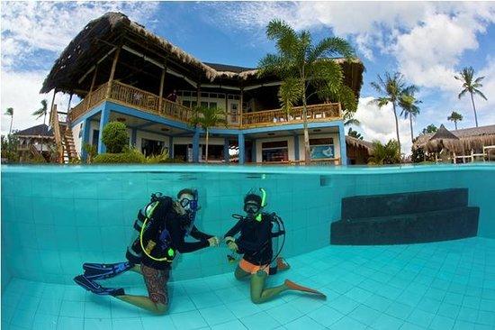 Swimming pool picture of liquid dumaguete dauin Dumaguete hotels with swimming pool