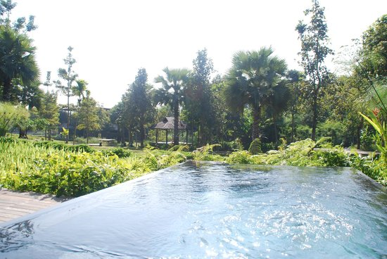 Veranda High Resort Chiang Mai - MGallery Collection: Plunge pool of pool villa