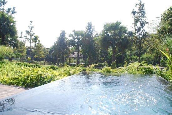 Veranda High Resort Chiang Mai - MGallery Collection : Plunge pool of pool villa